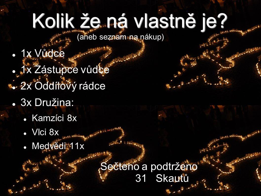 Skauti Vyškov 2. chlapecký oddíl Kondoři