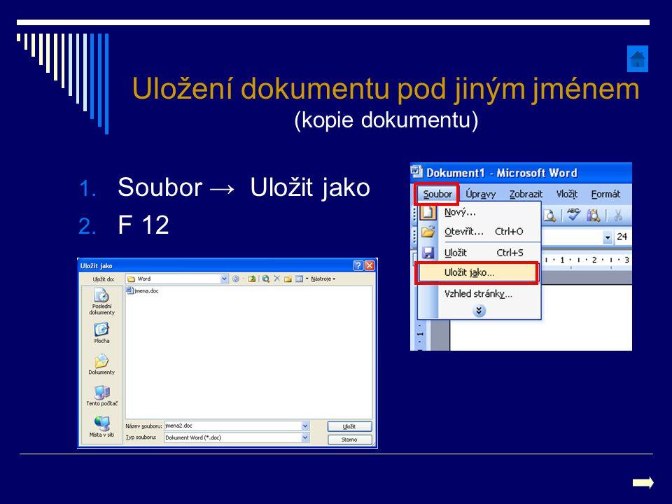 1. Soubor → Uložit jako 2. F 12 Uložení dokumentu pod jiným jménem (kopie dokumentu)