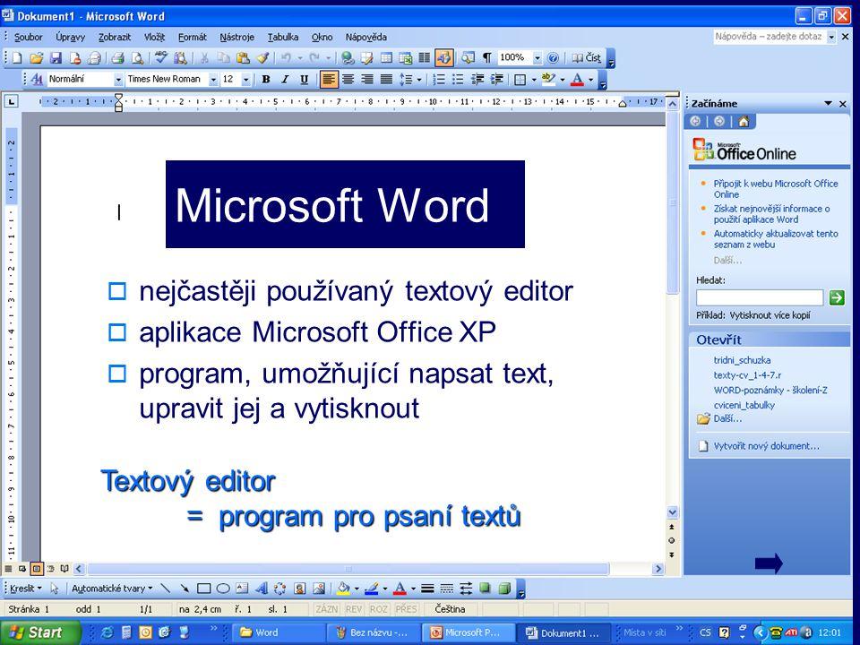 Spuštění programu 1.Ikona na ploše - Microsoft Word → 2 x L T 2.
