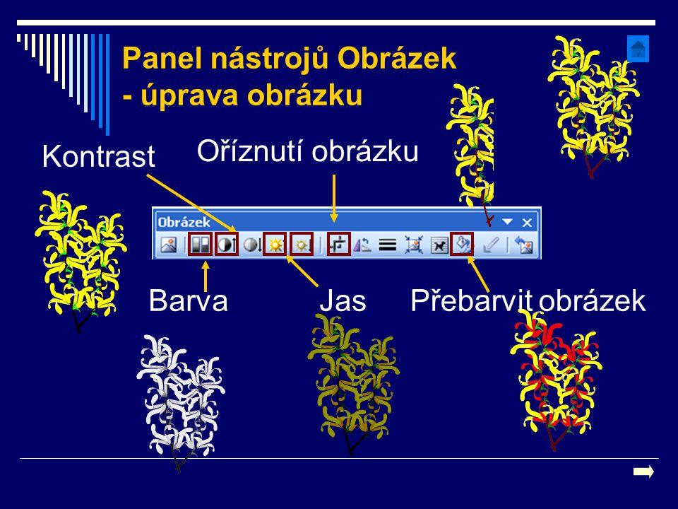 Oříznutí obrázku Kontrast JasBarvaPřebarvit obrázek Panel nástrojů Obrázek - úprava obrázku
