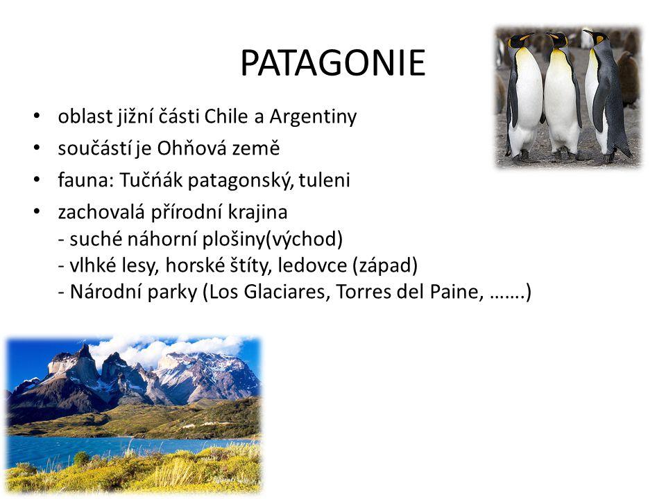 PATAGONIE oblast jižní části Chile a Argentiny součástí je Ohňová země fauna: Tučńák patagonský, tuleni zachovalá přírodní krajina - suché náhorní plo