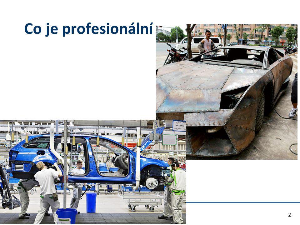 Co je profesionální 2