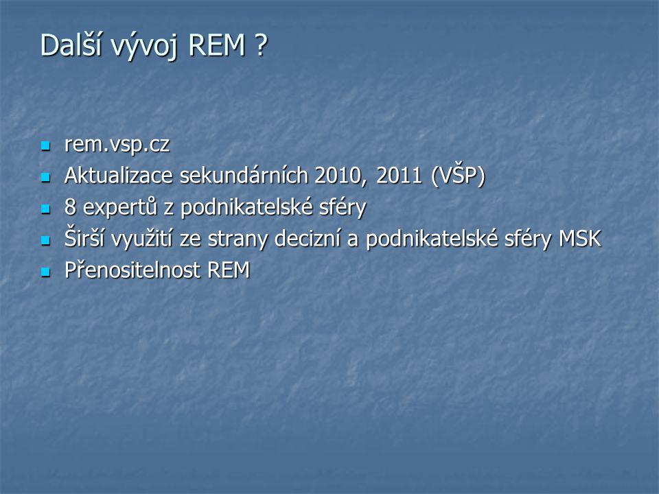 Další vývoj REM .