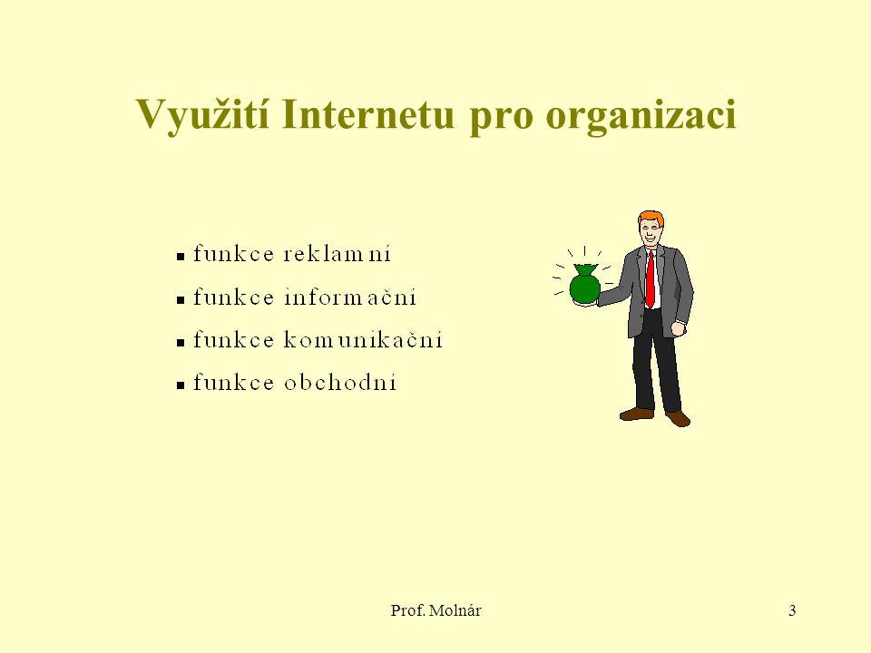Prof. Molnár3 Využití Internetu pro organizaci
