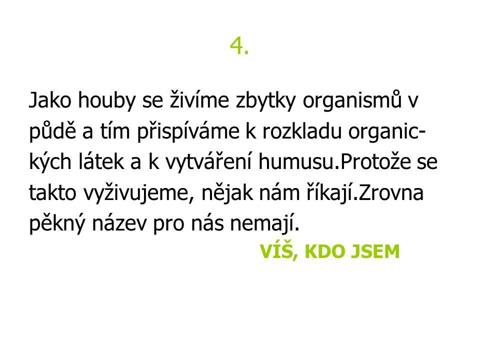 4. Jako houby se živíme zbytky organismů v půdě a tím přispíváme k rozkladu organic- kých látek a k vytváření humusu.Protože se takto vyživujeme, něja