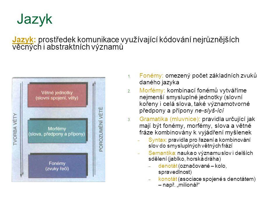 1. Fonémy: omezený počet základních zvuků daného jazyka 2. Morfémy: kombinací fonémů vytváříme nejmenší smysluplné jednotky (slovní kořeny i celá slov