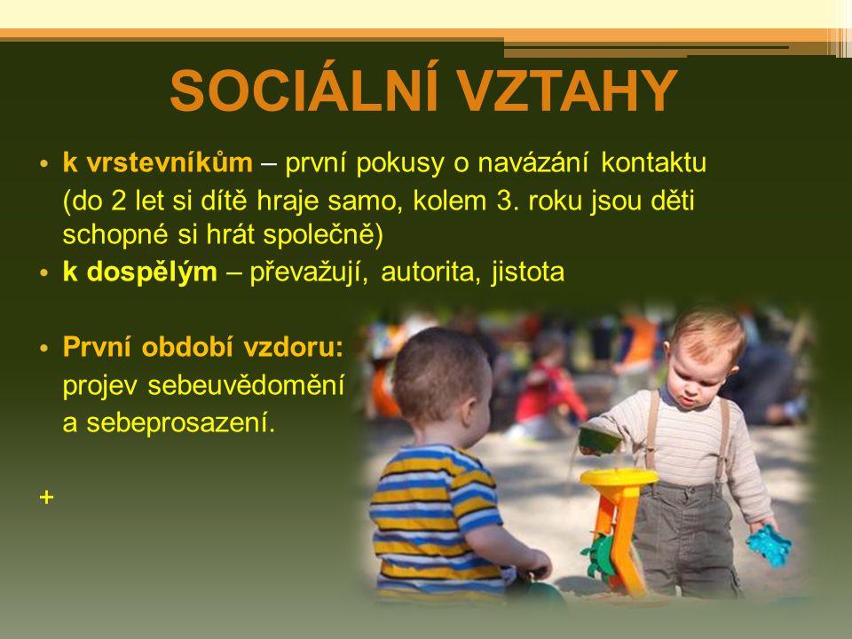 SOCIÁLNÍ VZTAHY k vrstevníkům – první pokusy o navázání kontaktu (do 2 let si dítě hraje samo, kolem 3. roku jsou děti schopné si hrát společně) k dos