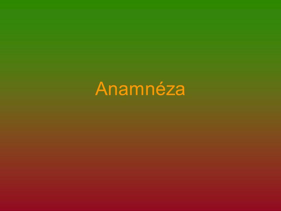 Anamnéza Řecky – anamnesis = rozvzpomínání se Řecky – anamnesis = rozvzpomínání se Je souhrn údajů o zdravotním stavu nemocného získaných při rozhovoru s ním, případně jeho příbuznými.
