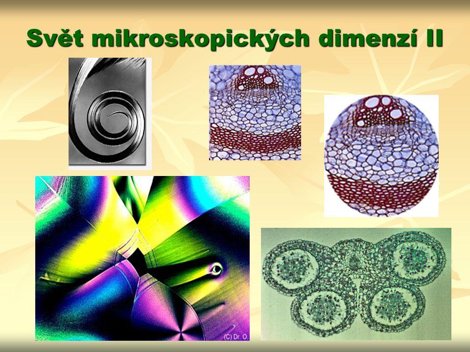 Svět mikroskopických dimenzí II