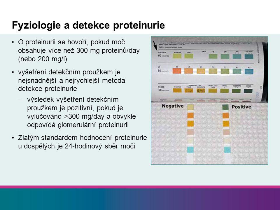 Fyziologie a detekce proteinurie O proteinurii se hovoří, pokud moč obsahuje více než 300 mg proteinů/day (nebo 200 mg/l) vyšetření detekčním proužkem je nejsnadnější a nejrychlejší metoda detekce proteinurie –výsledek vyšetření detekčním proužkem je pozitivní, pokud je vylučováno >300 mg/day a obvykle odpovídá glomerulární proteinurii Zlatým standardem hodnocení proteinurie u dospělých je 24-hodinový sběr moči