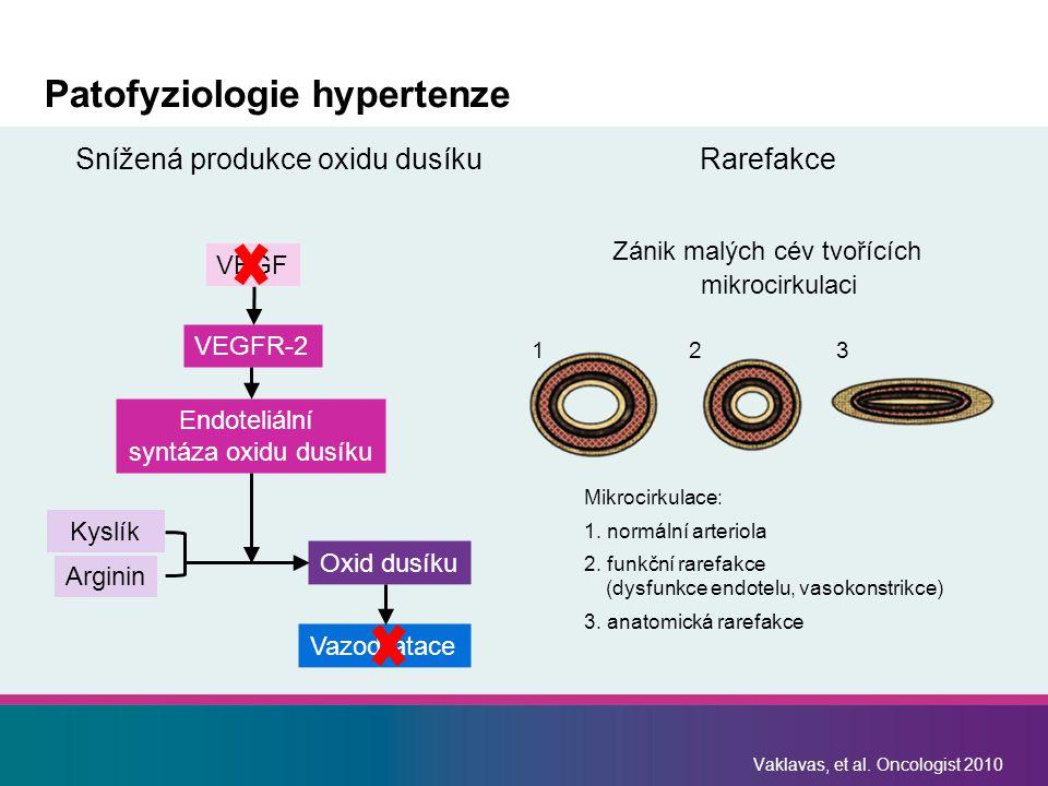 Patofyziologie hypertenze Snížená produkce oxidu dusíkuRarefakce Zánik malých cév tvořících mikrocirkulaci Vaklavas, et al.