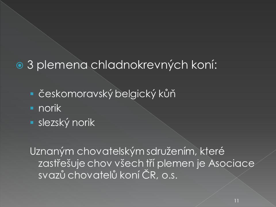  3 plemena chladnokrevných koní:  českomoravský belgický kůň  norik  slezský norik Uznaným chovatelským sdružením, které zastřešuje chov všech tří plemen je Asociace svazů chovatelů koní ČR, o.s.