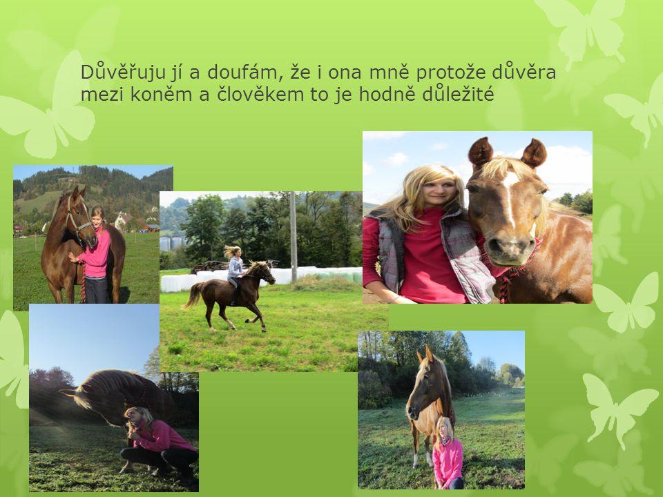 Důvěřuju jí a doufám, že i ona mně protože důvěra mezi koněm a člověkem to je hodně důležité