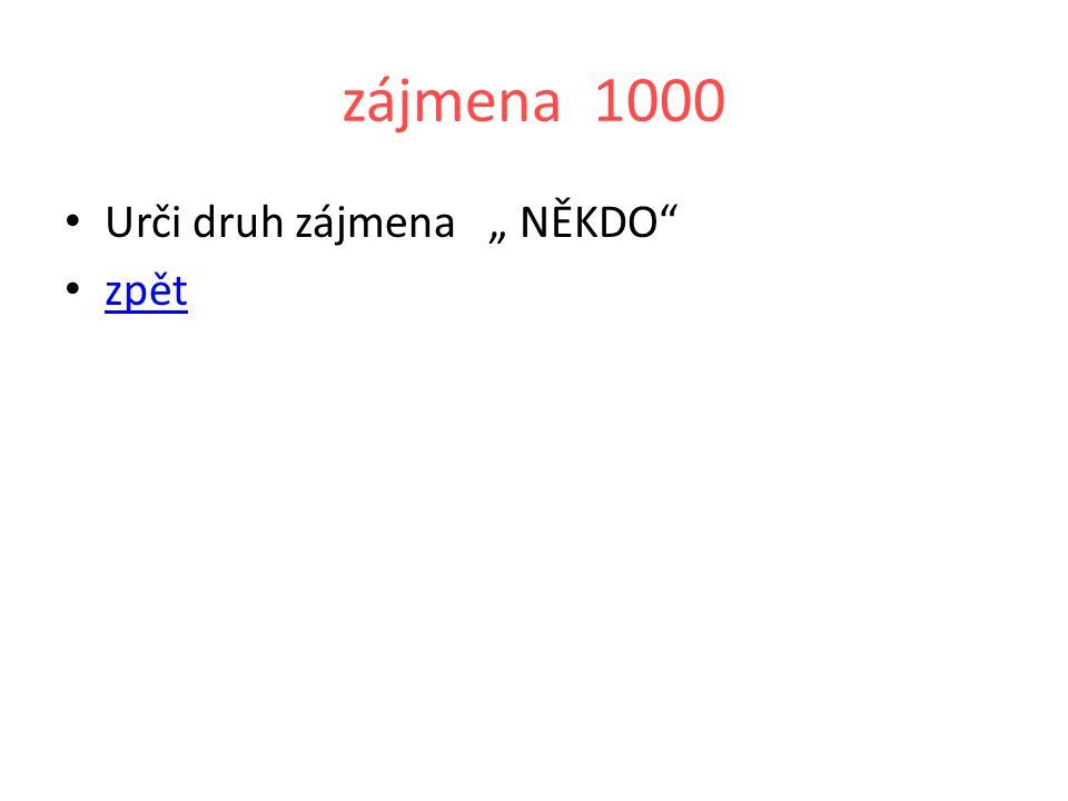 """zájmena 2000 Urči druh zájmena """"NIC zpět"""