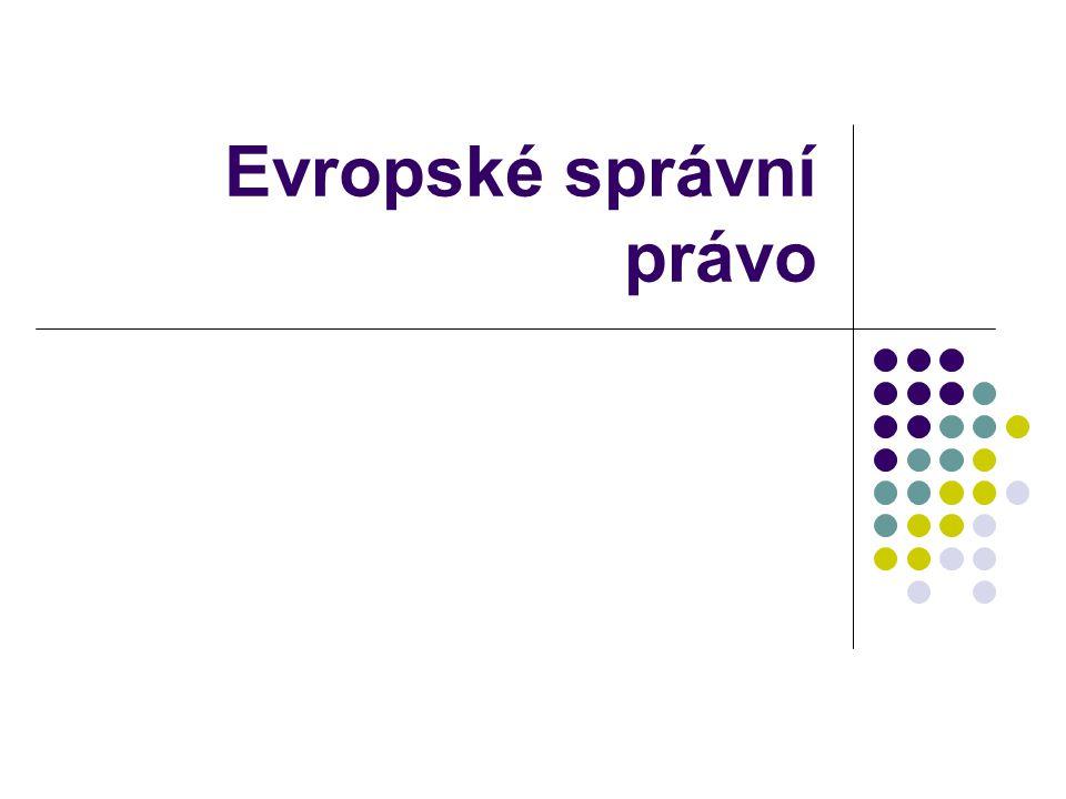 Právo společného správního prostoru - pokračování Společný správní prostor se vytvořil především v rámci Rady Evropy cíl - odstraňovat ve veřejné správě překážky, které vyplývají z rozdělení Evropy na jednotlivé státy nejdůležitější úmluvy Evropská charta místní samosprávy Evropská rámcová úmluva o přeshraniční spolupráci mezi územními orgány (Madridská úmluva) Evropská úmluva o získávání informací a důkazů týkajících se správních věcí v zahraničí Úmluva o ochraně osob při automatizovaném zpracování osobních dat Úmluva o účasti cizinců v místním veřejném životě Evropská charta regionálních a minoritních jazyků Evropská úmluva o státní příslušnosti