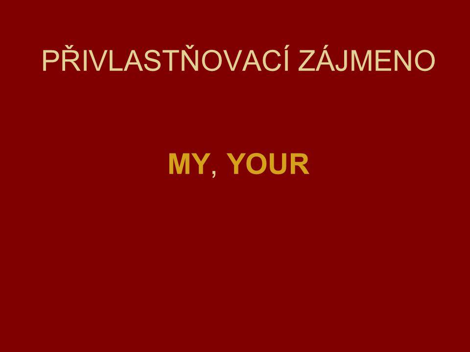 PŘIVLASTŇOVACÍ ZÁJMENO MY, YOUR