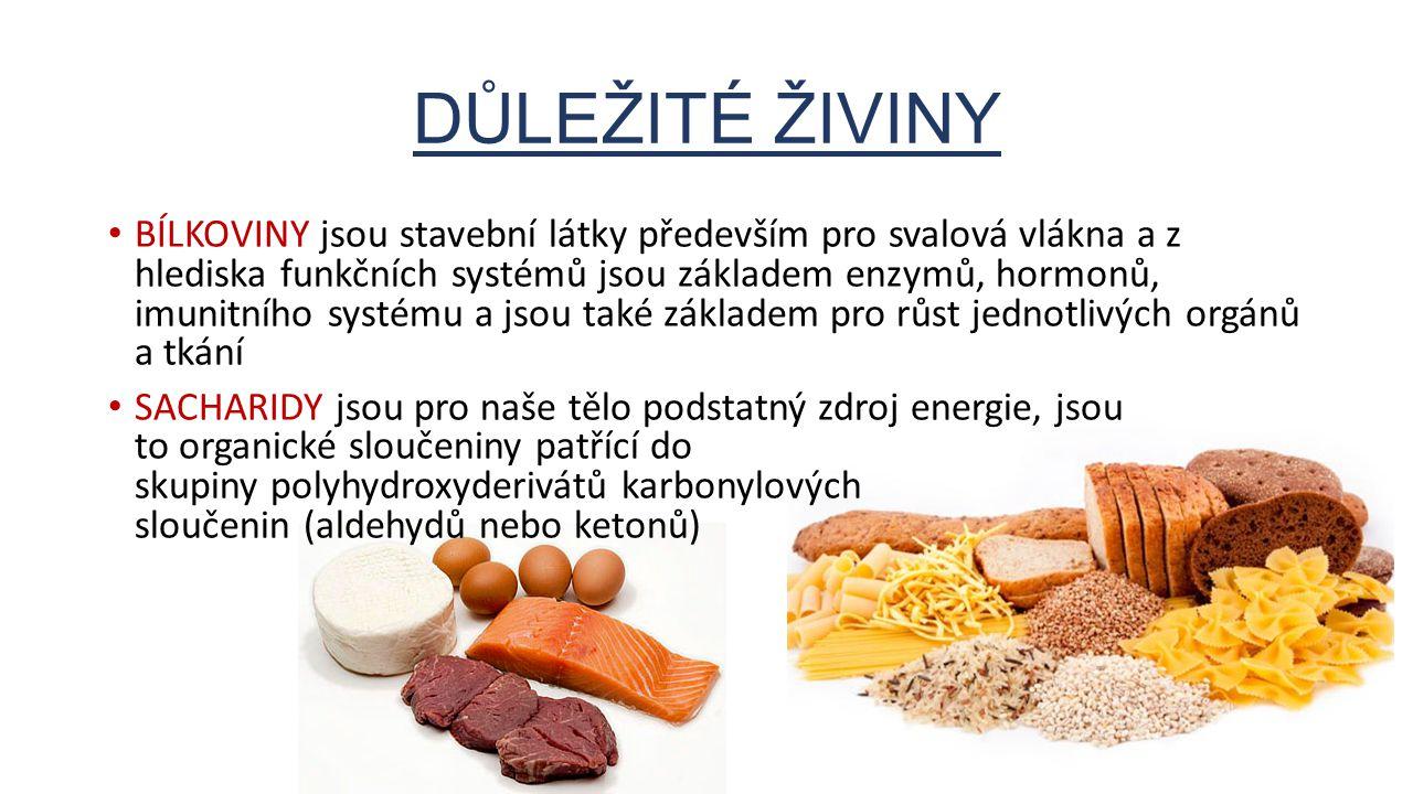 BÍLKOVINY jsou stavební látky především pro svalová vlákna a z hlediska funkčních systémů jsou základem enzymů, hormonů, imunitního systému a jsou tak