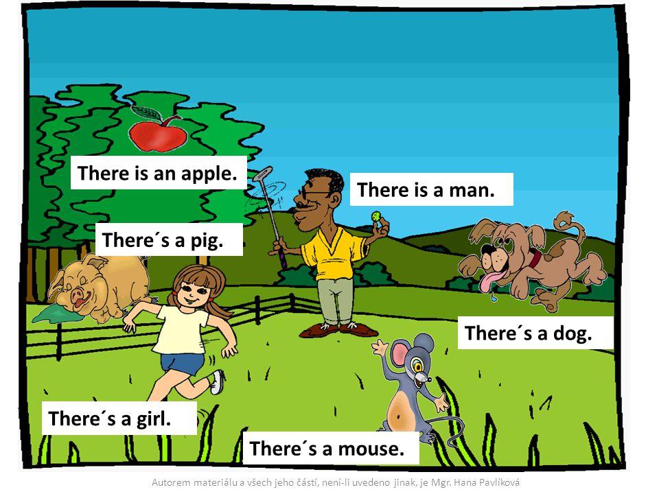 There is an apple. There is a man. There´s a dog. There´s a mouse. There´s a girl. There´s a pig. Autorem materiálu a všech jeho částí, není-li uveden
