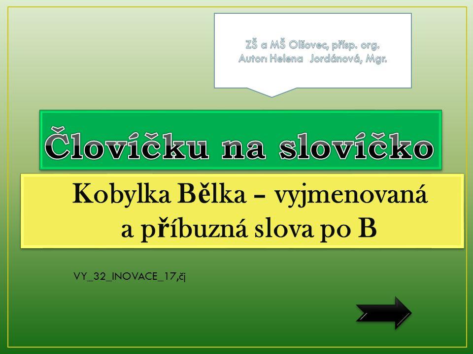 VY_32_INOVACE_17,čj