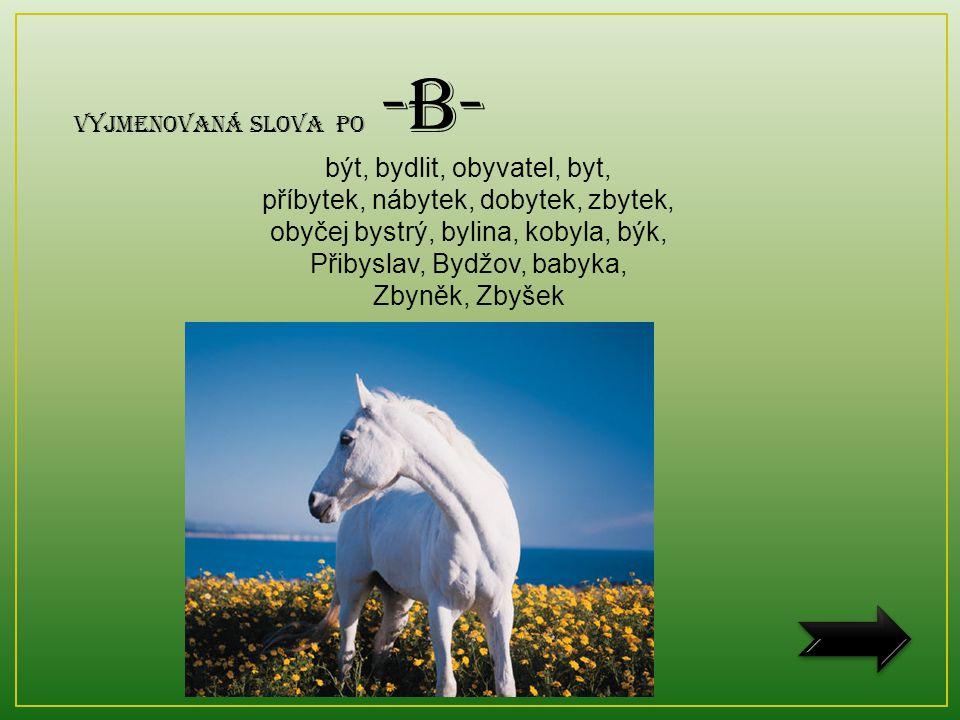 Vyjmenovaná slova po -B- být, bydlit, obyvatel, byt, příbytek, nábytek, dobytek, zbytek, obyčej bystrý, bylina, kobyla, býk, Přibyslav, Bydžov, babyka