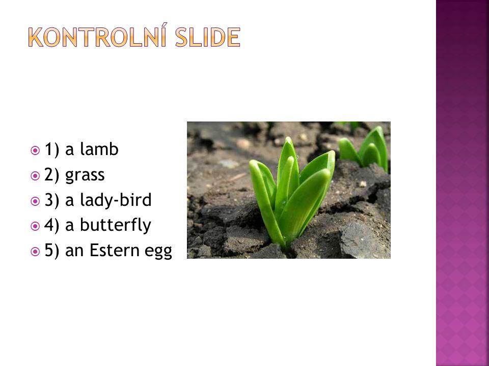  1) a lamb  2) grass  3) a lady-bird  4) a butterfly  5) an Estern egg