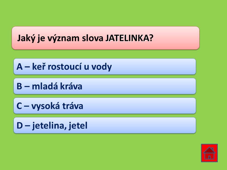 JATELINKA Jaký je význam slova JATELINKA? A – keř rostoucí u vody B – mladá kráva C – vysoká tráva D – jetelina, jetel