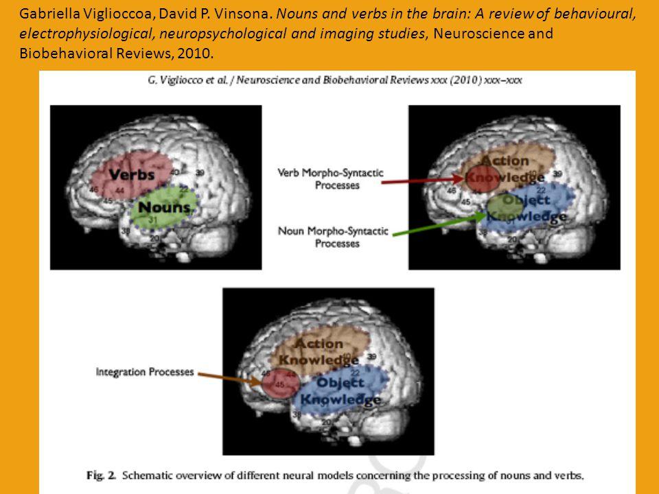 INTERHEMISFERÁLNÍ KOMUNIKACE  Přístup k jednomu mentálnímu slovníku a sémantickým znalostem – rozdíl ve způsobu manipulace s reprezentací: RH mnohonásobná interpretace a aktivace vzdálených významových asociací, LH preferuje selekci na základě jednoznačných sémantických rysů pevně zformovaných  RH zachovává významové spojení slov sdružených na základě menšího počtu shodných sémantických rysů či uchovává méně obvyklé (frekventované) významy polysémních lexémů – difúzní neuronová síť aktivace významu  Koruna – peníze, strom, královská koruna vs.