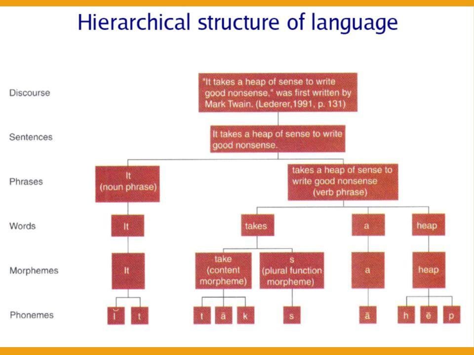 JAZYKOVÝ SYSTÉM – INTERHEMISFERÁLNÍ FUNKCE Segmentální úroveň  Fonetika – koordinace artikulace, fonace, respirace; neuromuskulární realizace hlásek – Prozodie lingvistická  Fonologie – lineární řazení hlásek v relevantním pořadí PUK vs.