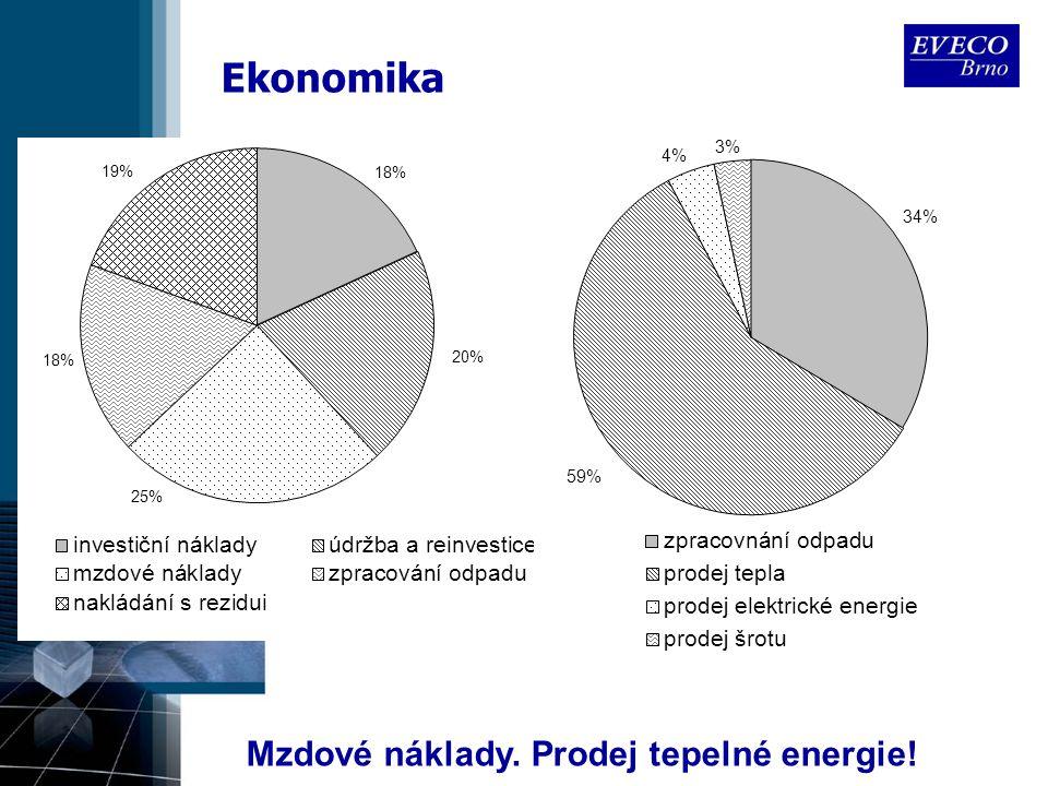 Ekonomika Mzdové náklady. Prodej tepelné energie!