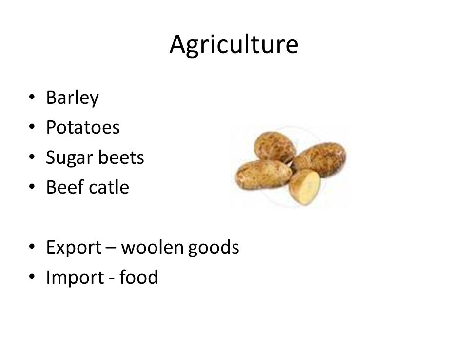 Agriculture Barley Potatoes Sugar beets Beef catle Export – woolen goods Import - food