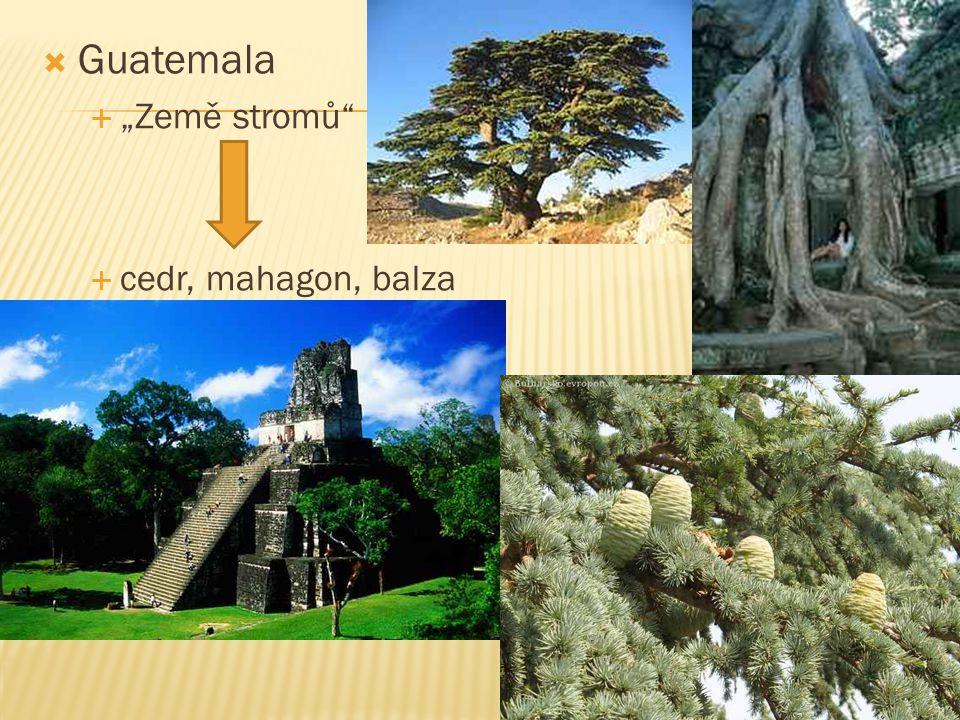 " Guatemala  ""Země stromů""  cedr, mahagon, balza"