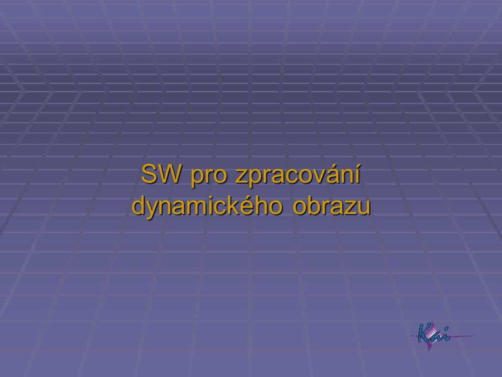 SW pro zpracování dynamického obrazu