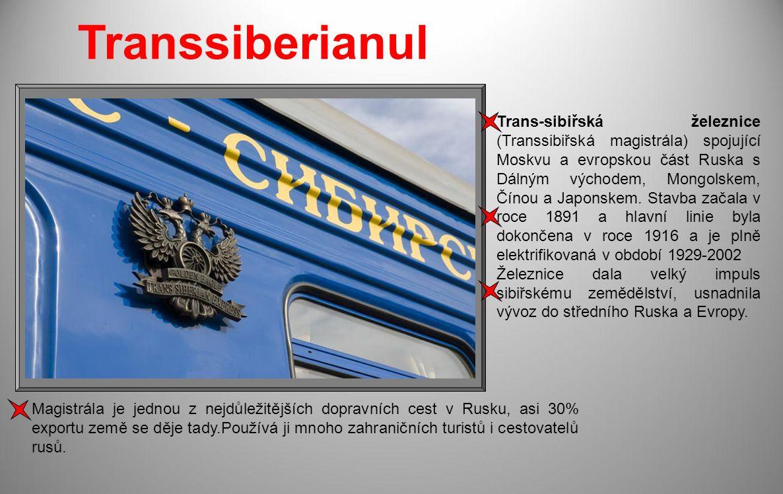 Trans-sibiřská železnice (Transsibiřská magistrála) spojující Moskvu a evropskou část Ruska s Dálným východem, Mongolskem, Čínou a Japonskem.