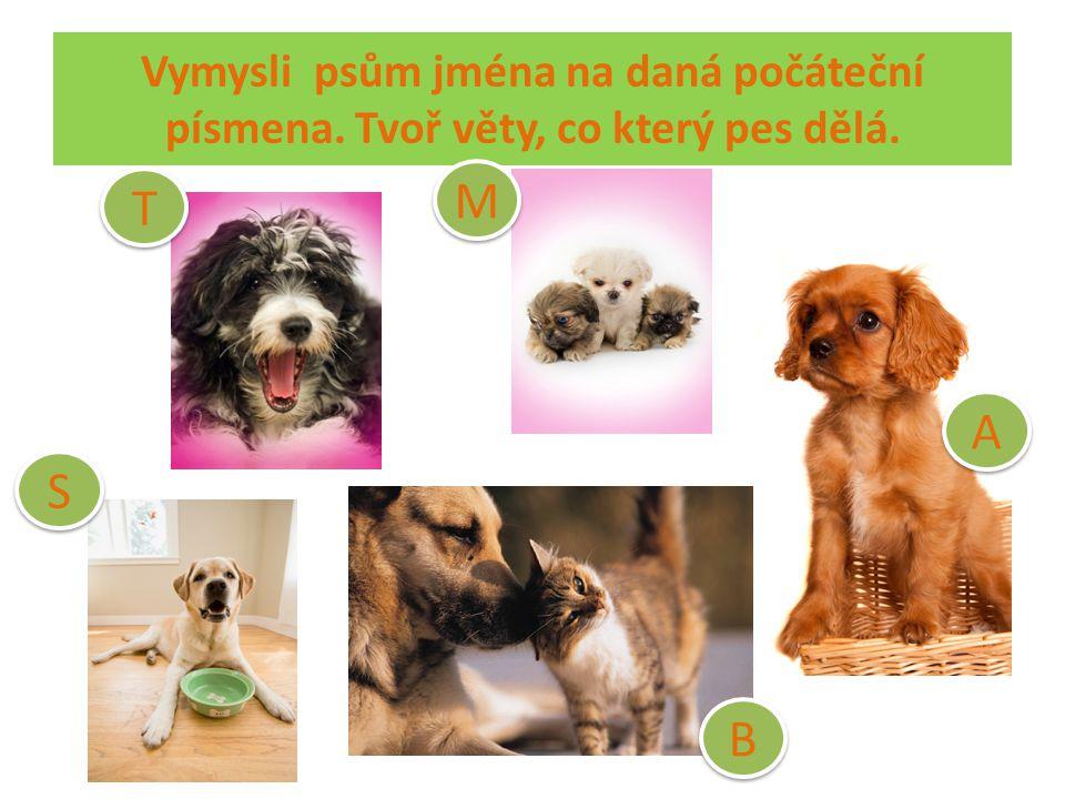 Vymysli psům jména na daná počáteční písmena. Tvoř věty, co který pes dělá. A A M M T T S S B B