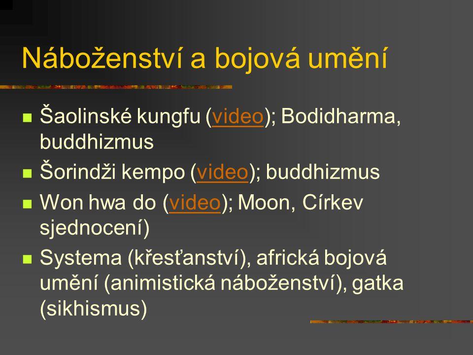 Víra Budhizmus: Různé formy, stálá inspirace z kontinentu Zenový budhizmus (čínsky čchan): Očista misogi (pojem ze šintó) – satori, kenšó Vhled do vla