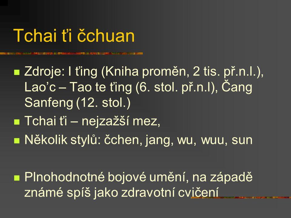 Čínská bojová umění Interní styly ** Práce s čchi Imaginace Využití síly a pohybu protivníka Tchai ťi čchuan, sing i čchuan, pakua čchuan, … Externí s
