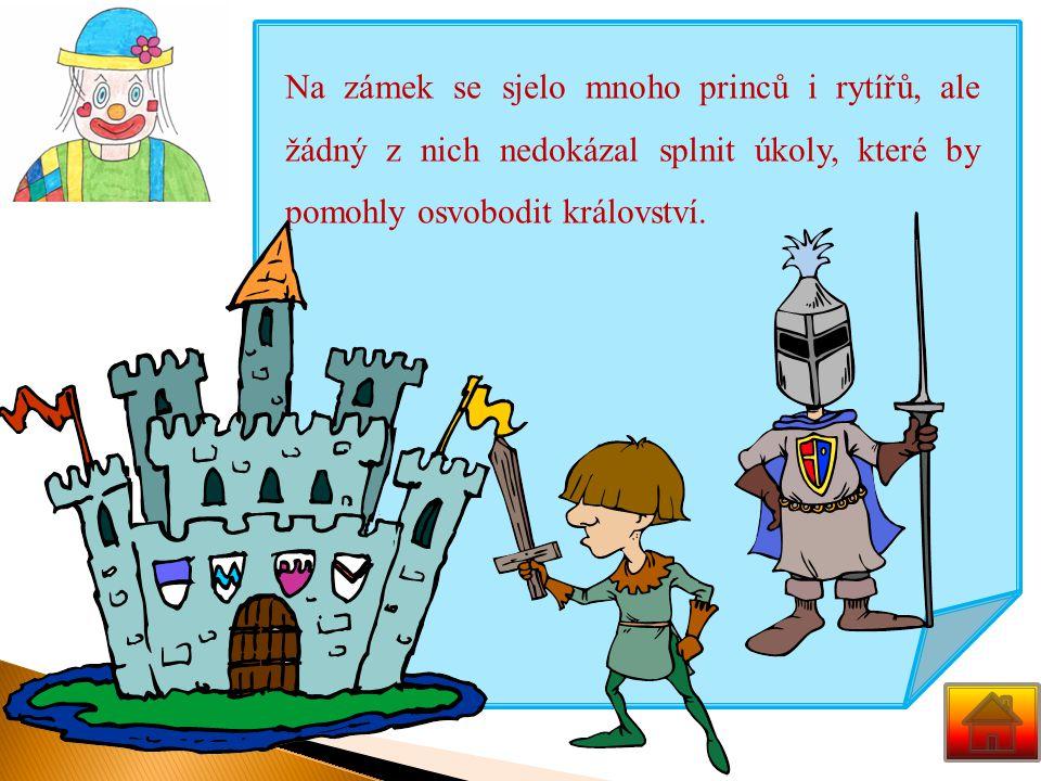 Na zámek se sjelo mnoho princů i rytířů, ale žádný z nich nedokázal splnit úkoly, které by pomohly osvobodit království.