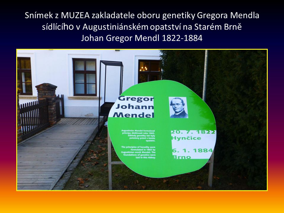 Snímek z MUZEA zakladatele oboru genetiky Gregora Mendla sídlící ho v Augustiniánském opatství na Starém Brně Johan Gregor Mendl 1822-1884