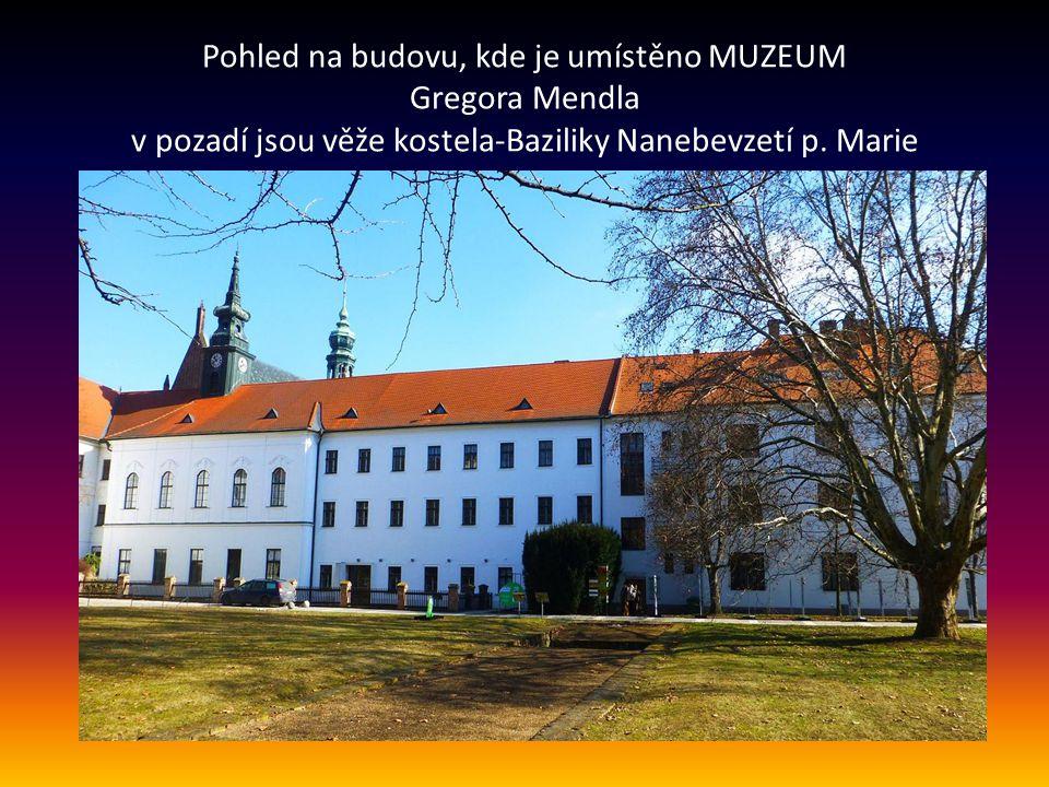 Pohled na budovu, kde je umístěno MUZEUM Gregora Mendla v pozadí jsou věže kostela-Baziliky Nanebevzetí p.