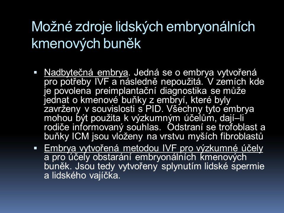 Možné zdroje lidských embryonálních kmenových buněk  Nadbytečná embrya. Jedná se o embrya vytvořená pro potřeby IVF a následně nepoužitá. V zemích kd
