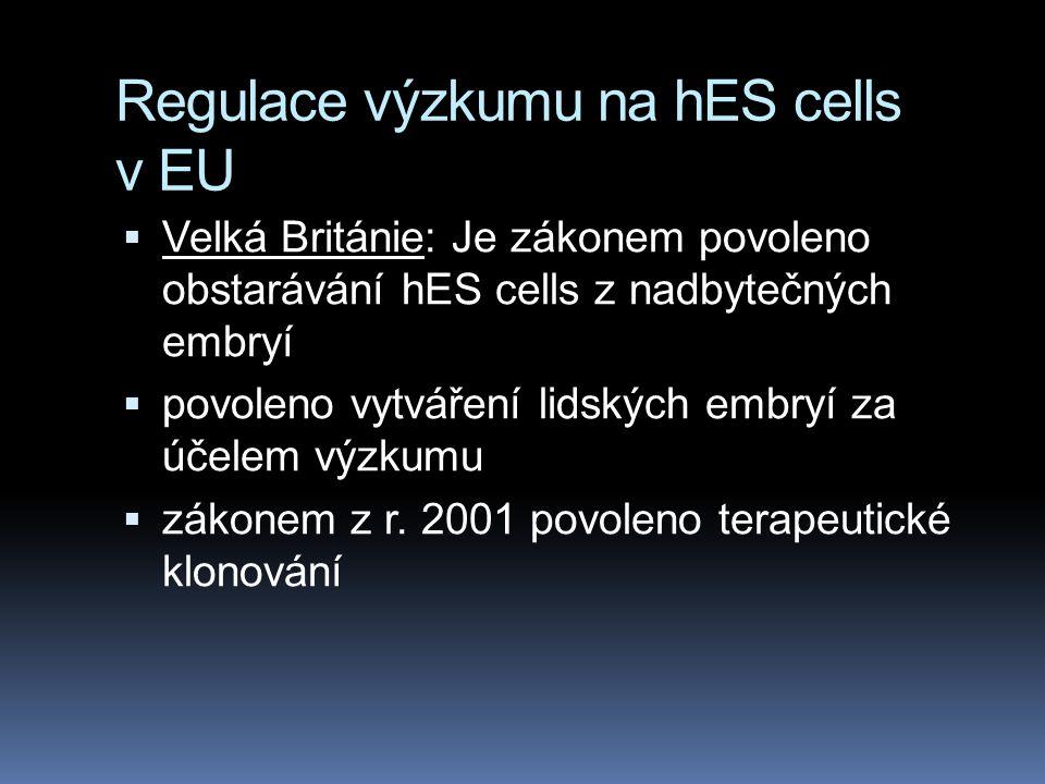 Regulace výzkumu na hES cells v EU  Velká Británie: Je zákonem povoleno obstarávání hES cells z nadbytečných embryí  povoleno vytváření lidských embryí za účelem výzkumu  zákonem z r.