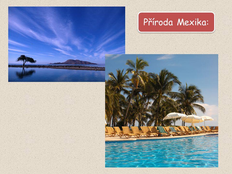 Pláže v Cancúnu [obr. 8]