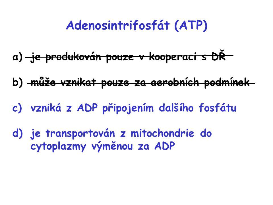 Adenosintrifosfát (ATP) a)je produkován pouze v kooperaci s DŘ b)může vznikat pouze za aerobních podmínek c)vzniká z ADP připojením dalšího fosfátu d)