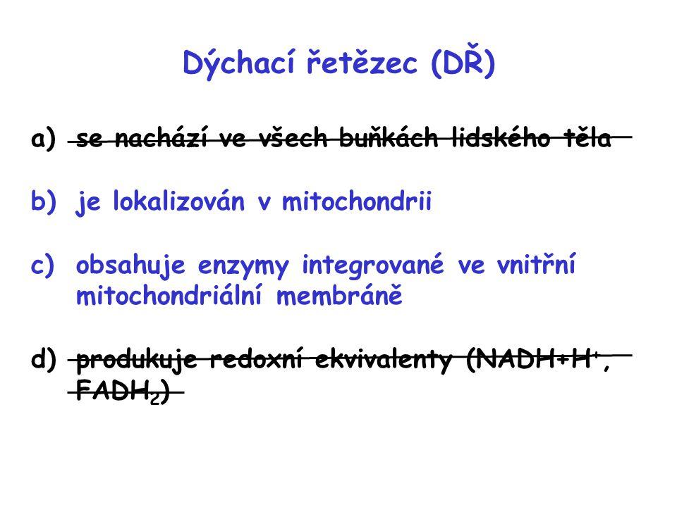 V reakcích dýchcího řetězce a)je kyslík redukován na H 2 O b)jsou protony (H + ) přenášeny do mezimembránového prostoru mitochondrie c)je Komplexem I produkováno ATP d)jsou všechny redukované koenzymy (NADH+H + a FADH 2 ) reoxidovány stejným mechanismem