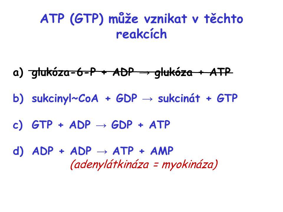 ATP (GTP) může vznikat v těchto reakcích a)glukóza-6-P + ADP → glukóza + ATP b)sukcinyl~CoA + GDP → sukcinát + GTP c)GTP + ADP → GDP + ATP d)ADP + ADP