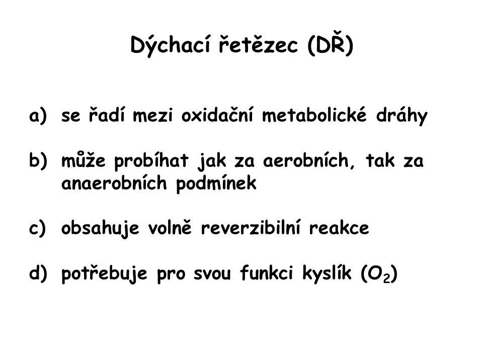 Dýchací řetězec (DŘ) a)se řadí mezi oxidační metabolické dráhy b)může probíhat jak za aerobních, tak za anaerobních podmínek c)obsahuje volně reverzibilní reakce d)potřebuje pro svou funkci kyslík (O 2 )