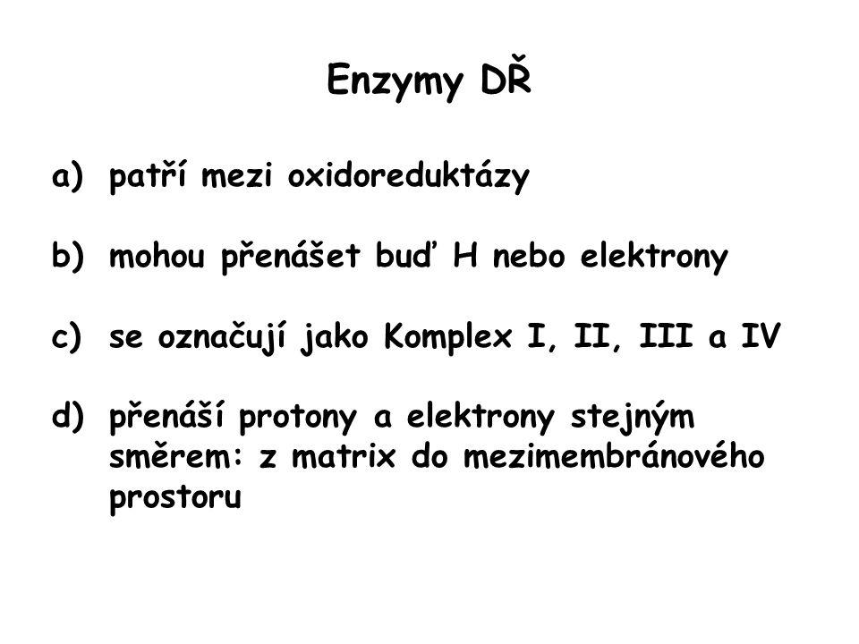 Enzymy DŘ a)patří mezi oxidoreduktázy b)mohou přenášet buď H nebo elektrony c)se označují jako Komplex I, II, III a IV d)přenáší protony a elektrony s