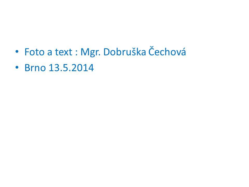 Foto a text : Mgr. Dobruška Čechová Brno 13.5.2014