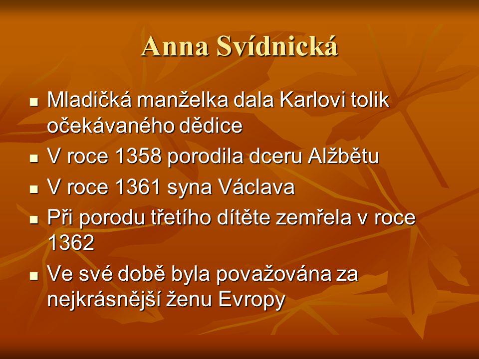Anna Svídnická Mladičká manželka dala Karlovi tolik očekávaného dědice Mladičká manželka dala Karlovi tolik očekávaného dědice V roce 1358 porodila dc