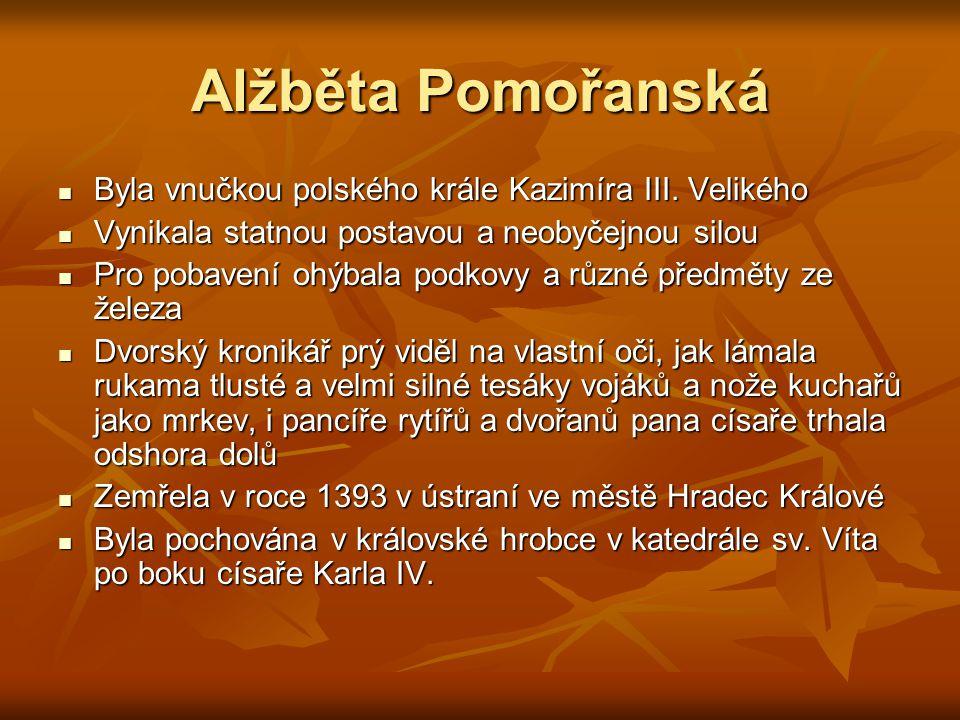 Alžběta Pomořanská Byla vnučkou polského krále Kazimíra III. Velikého Byla vnučkou polského krále Kazimíra III. Velikého Vynikala statnou postavou a n